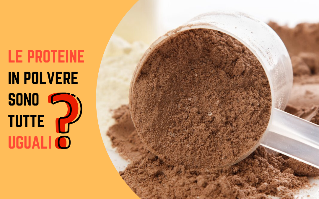 proteine in polvere